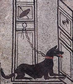 Watchdog Mosaic-Casi di Paquius Proculus Pompeii, Italy. 79 AD eruption.