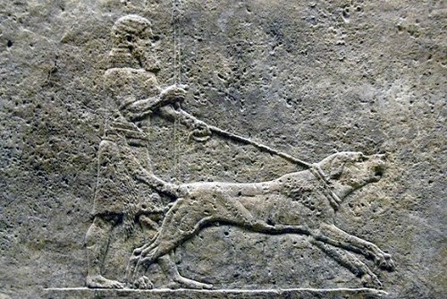 Alexander the Great with his dog Peritas.