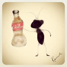 ants cola