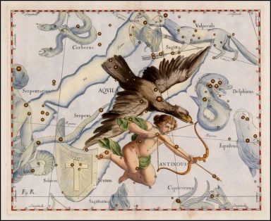 Celestial Map by Johannes Hevelius, Aquila and Antinous1687