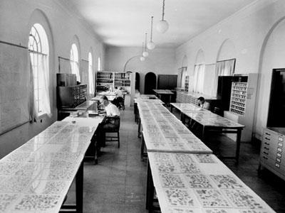 Dead_Sea_Scroll_Scholar_Examination