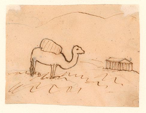 kamel-athen-hca
