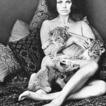 Nude) Wingate Paine - Tigress & cubs - Gravure