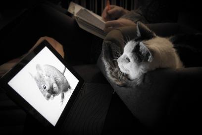 leggere_tablet