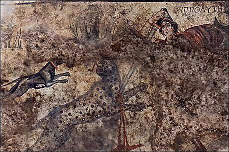 saliurfa-hipolita-cazando-leopardos